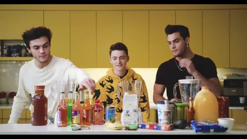 I Tried The Blender Challenge w The Dolan Twins And It Was Gross ¦ Noah Schnapp
