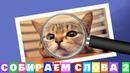 Ответы на игру Собираем слова 2 16, 17, 18, 19, 20 уровень в Одноклассниках, в ВКонтакте.