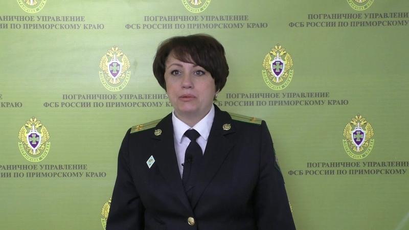 Комментарии А.В. Проскуренко - незаконно добытый краб, Приморье, апрель