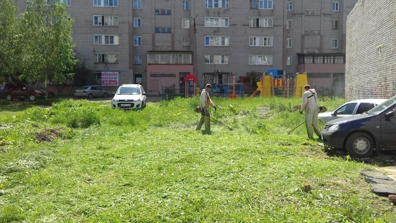 Ул. Кольцова, 13 Кошение газонов.