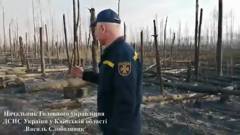 Ліквідації лісових пожеж на території Зони відчуження безумовного обов'язкового відселення