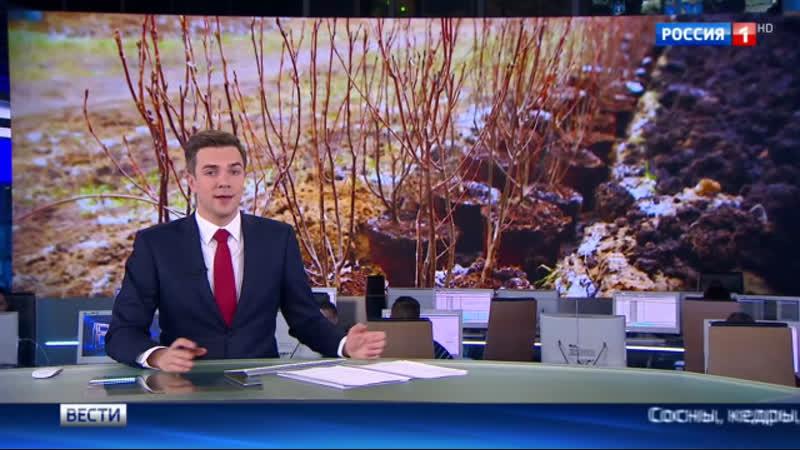 Вести Москва В столице стартовала акция Миллион деревьев